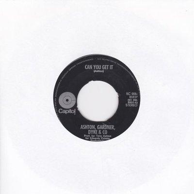 Ashton Gardner & Dyke & Co - Can you get it + Delirium (Vinylsingle)