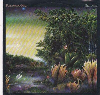 Fleetwood Mac - Big love + You and I. part II (Vinylsingle)