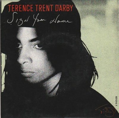 Terence Trend D'Arby - Sign your name + Greasy chicken (Vinylsingle)