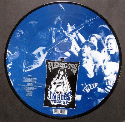 The Fuzztones - Nine Months Later -Picture Disc- (Vinyl LP)