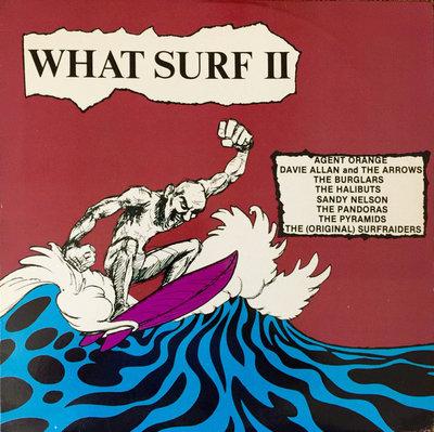Various - What Surf II (Vinyl LP)