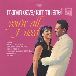 MARVIN GAYE & TAMMI TERRELL - YOU'RE ALL IN NEED (Vinyl LP)