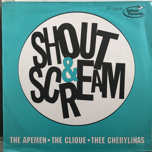 Various - Shout & Scream (Vinyl LP)