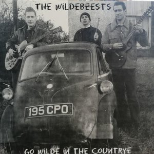 The Wildebeests - Go Wilde In The Countrye (Vinyl LP)