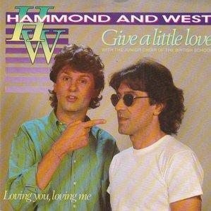 Albert Hammond & Albert West - Give a little love + Loving you loving me (Vinylsingle)