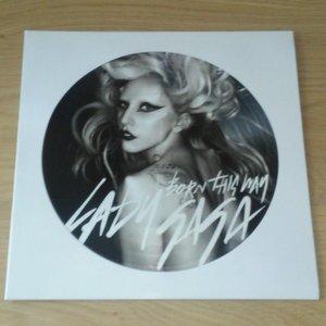 LP Picture Disc Hoes (wit) - per 10 stuks